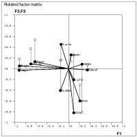 Rotated factor matrix as a scatter plot