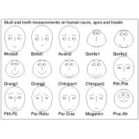 Multivariate diagrams; Chernoff's faces
